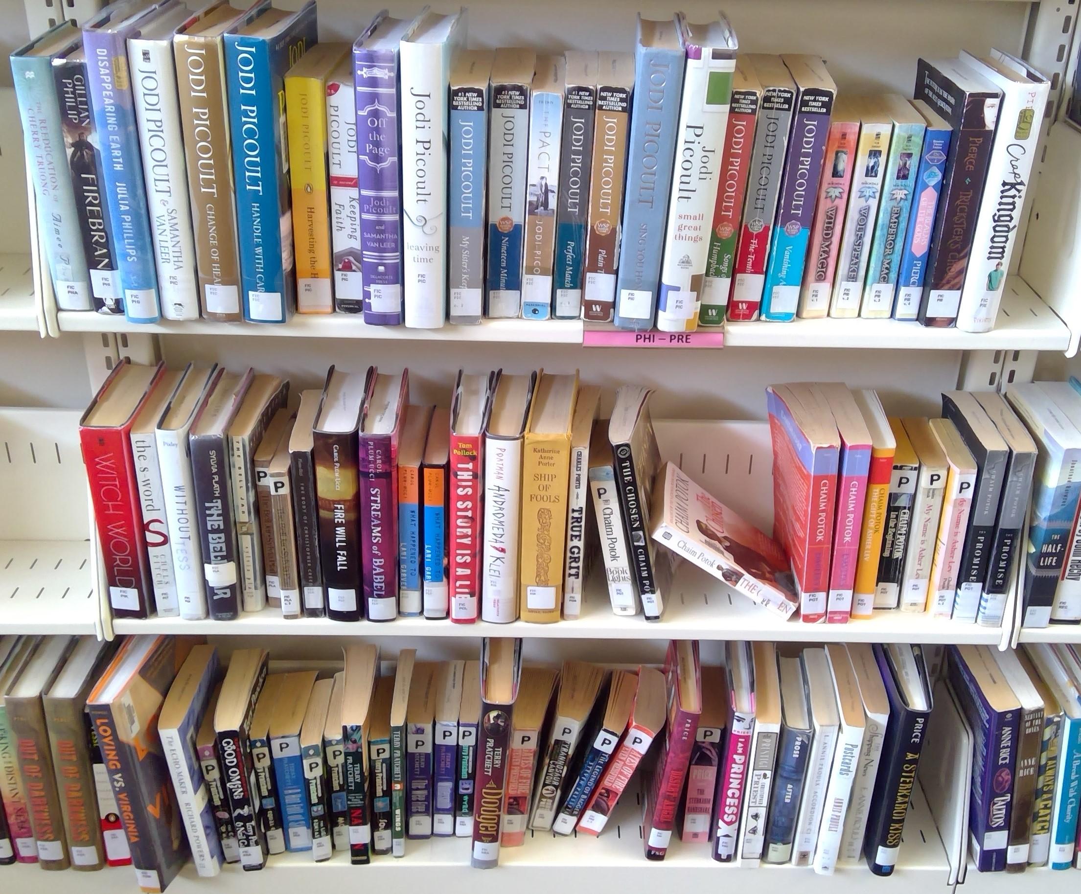 FIC Shelf 28