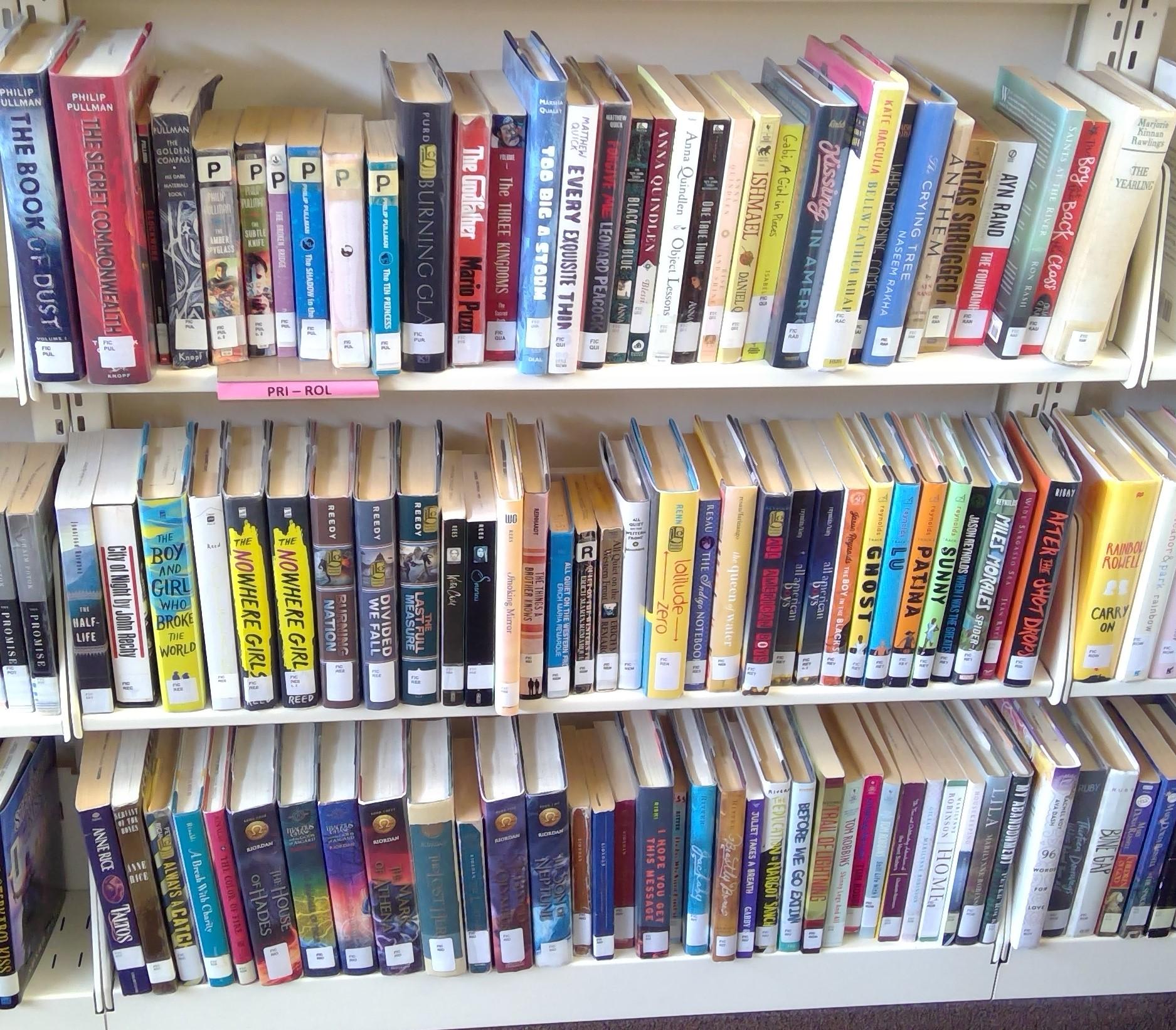 FIC Shelf 29