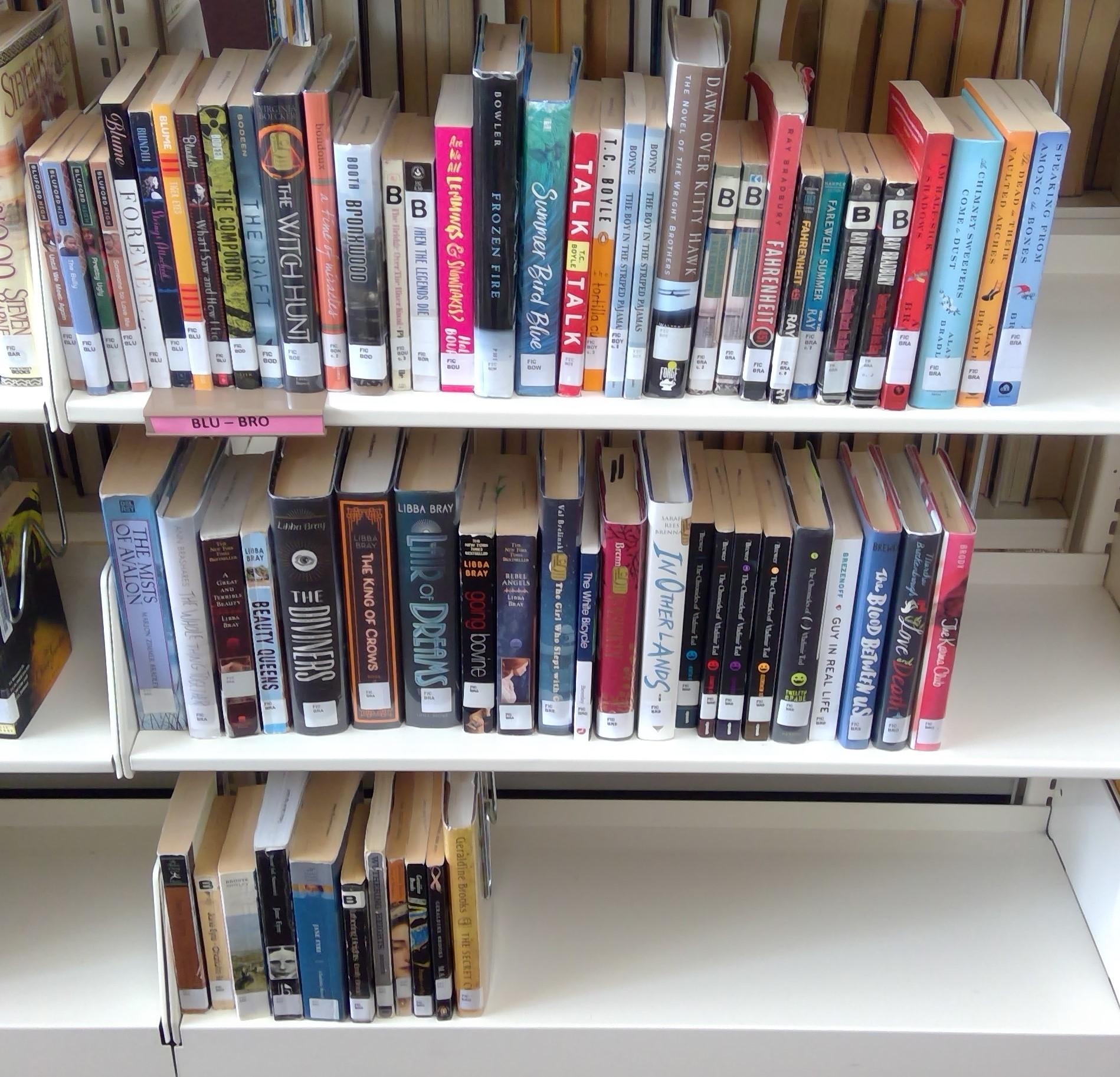 FIC Shelf 4