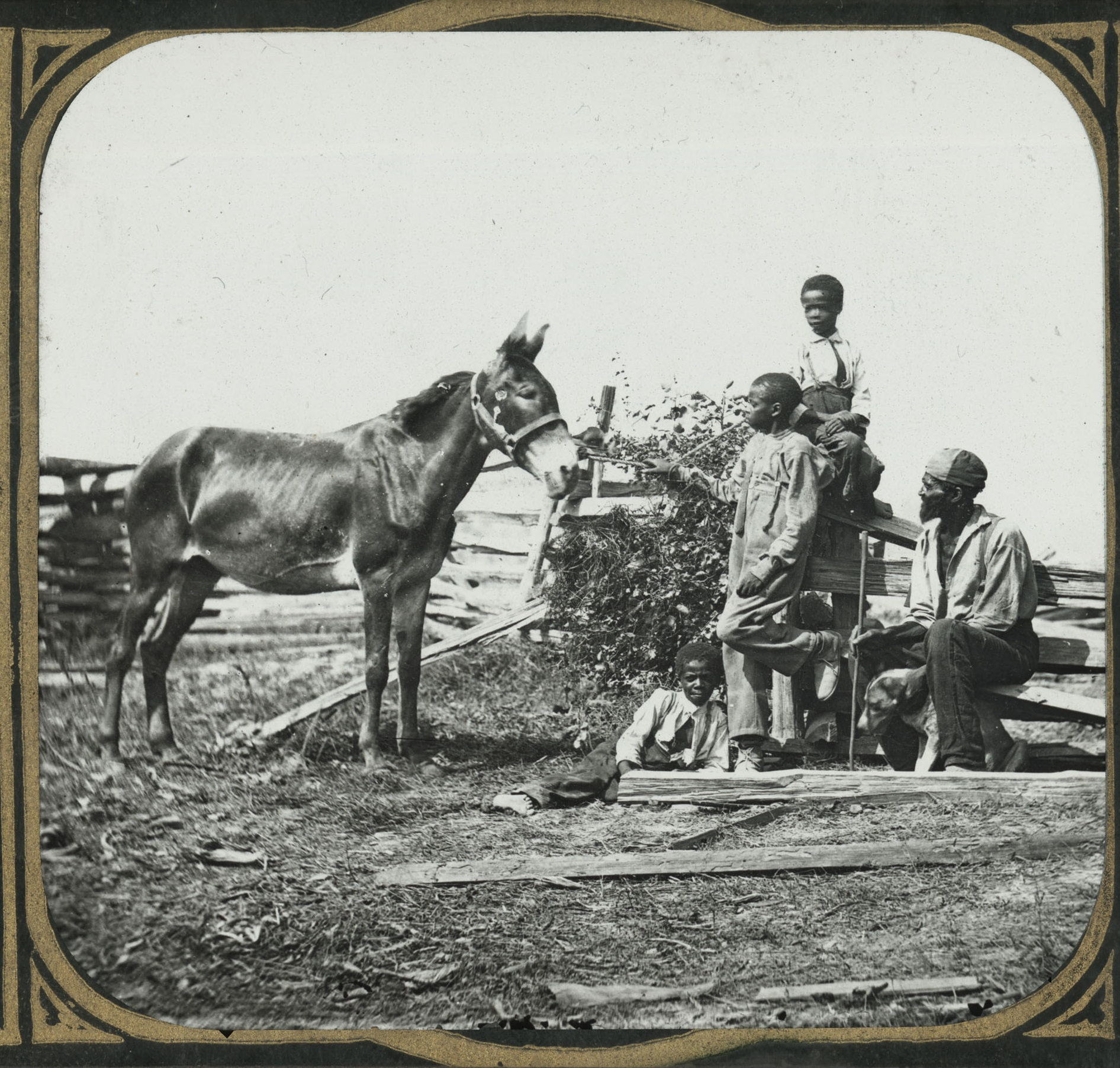 Lantern slide of three enslaved African American boys and an enslaved African American man.