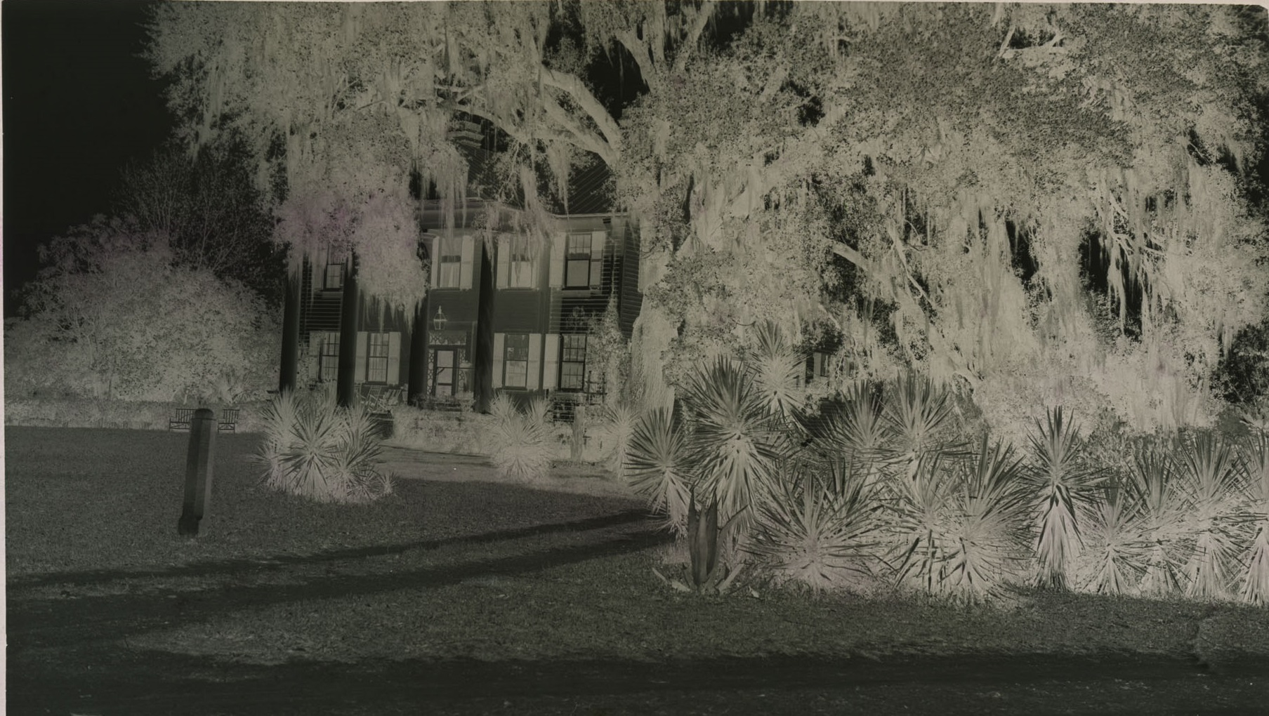 Film negative of Gippy Plantation mansion, located in Berkeley County, South Carolina