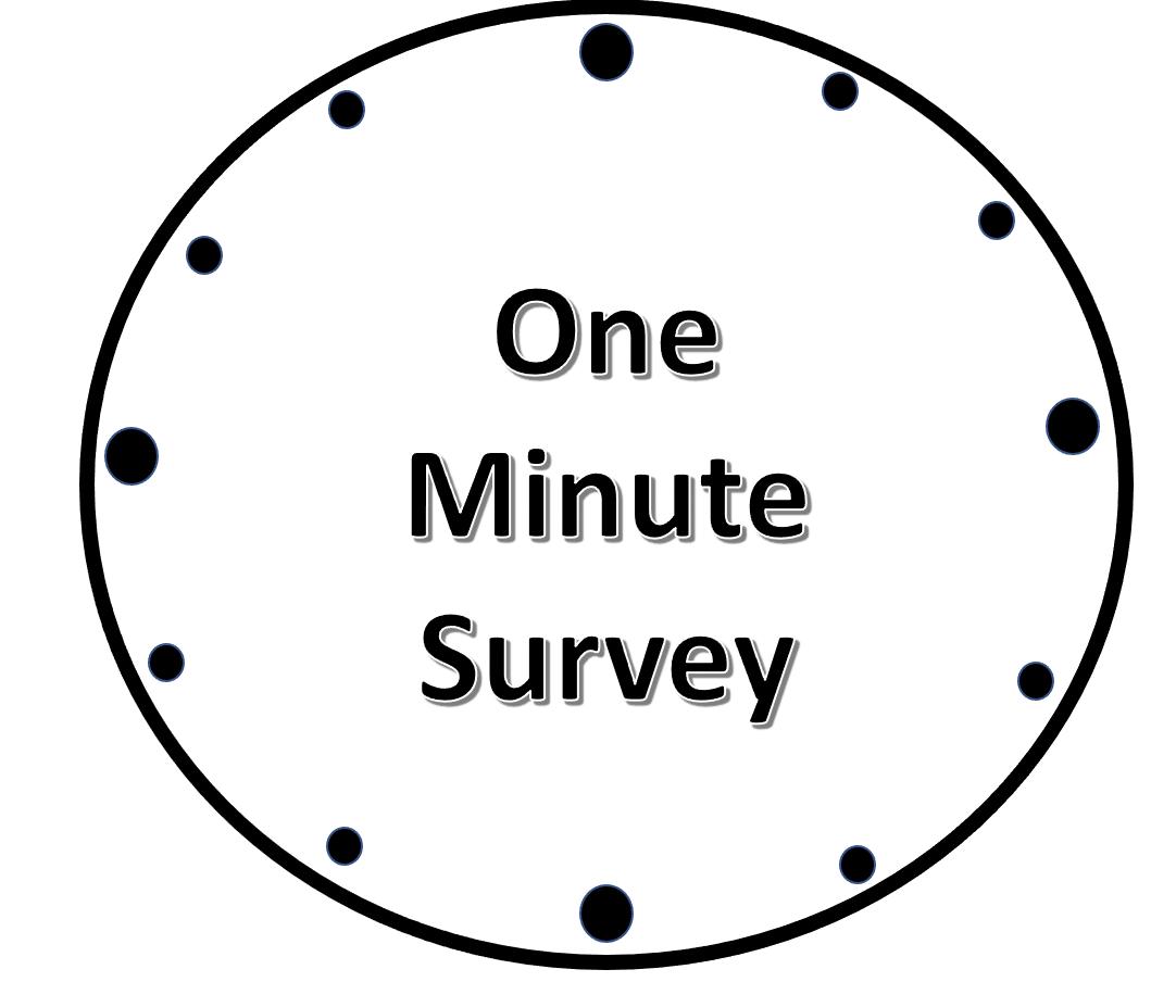 One Minute Survey