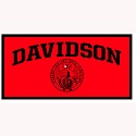 Red and black Davidson banner
