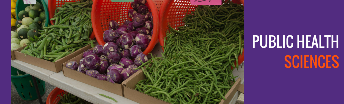 Color photo of vegetables on display at a market