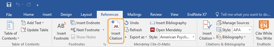 MS Word References tool bar screenshot