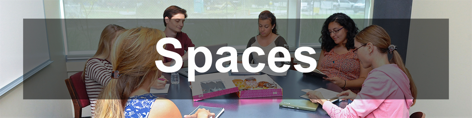 Spaces bckground group studing in a study room