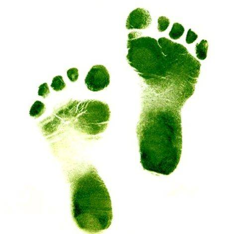Green Footprints, Wikimedia Commons, CC-BY-2.0