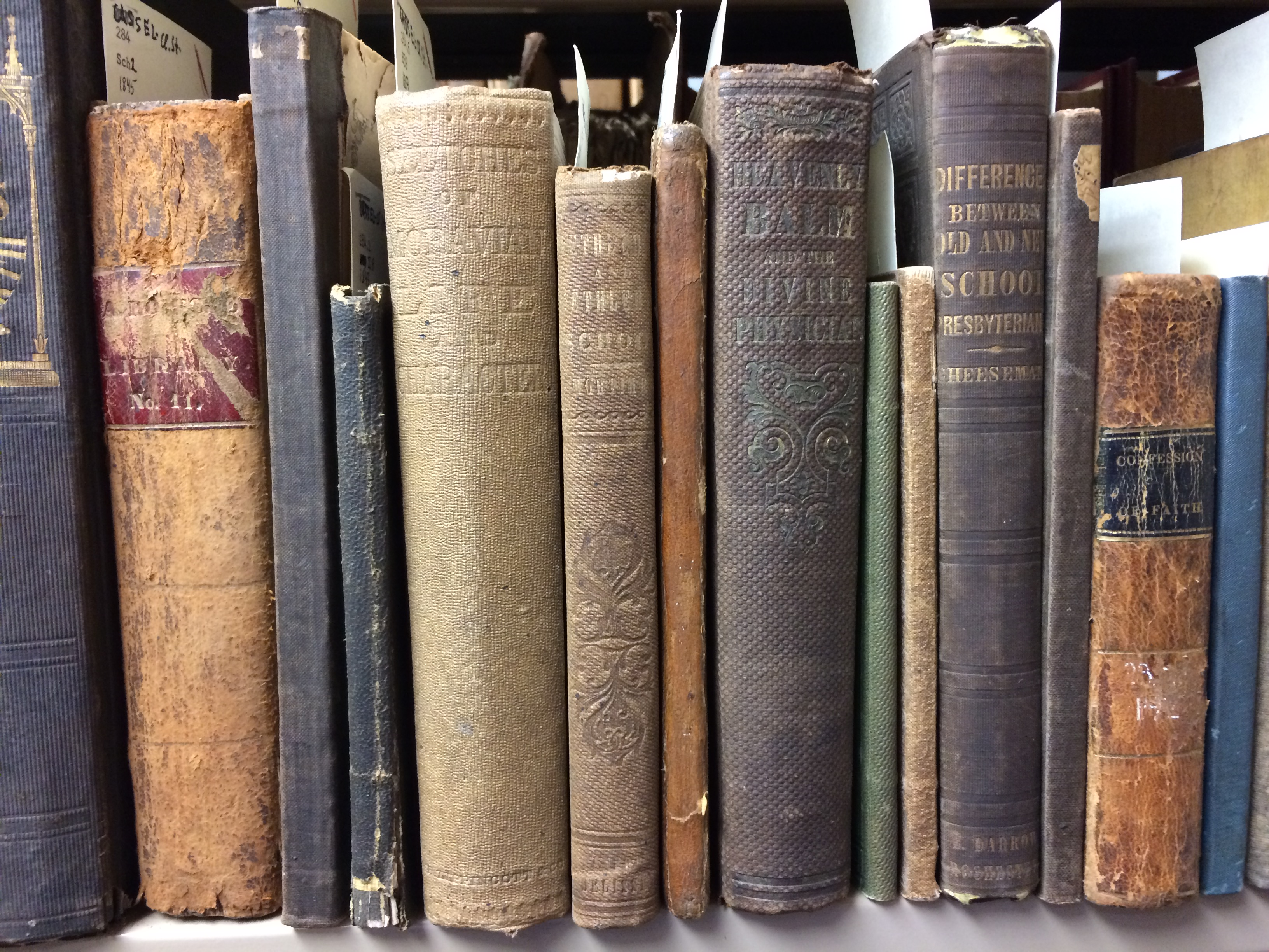 Shelf of Rarebooks