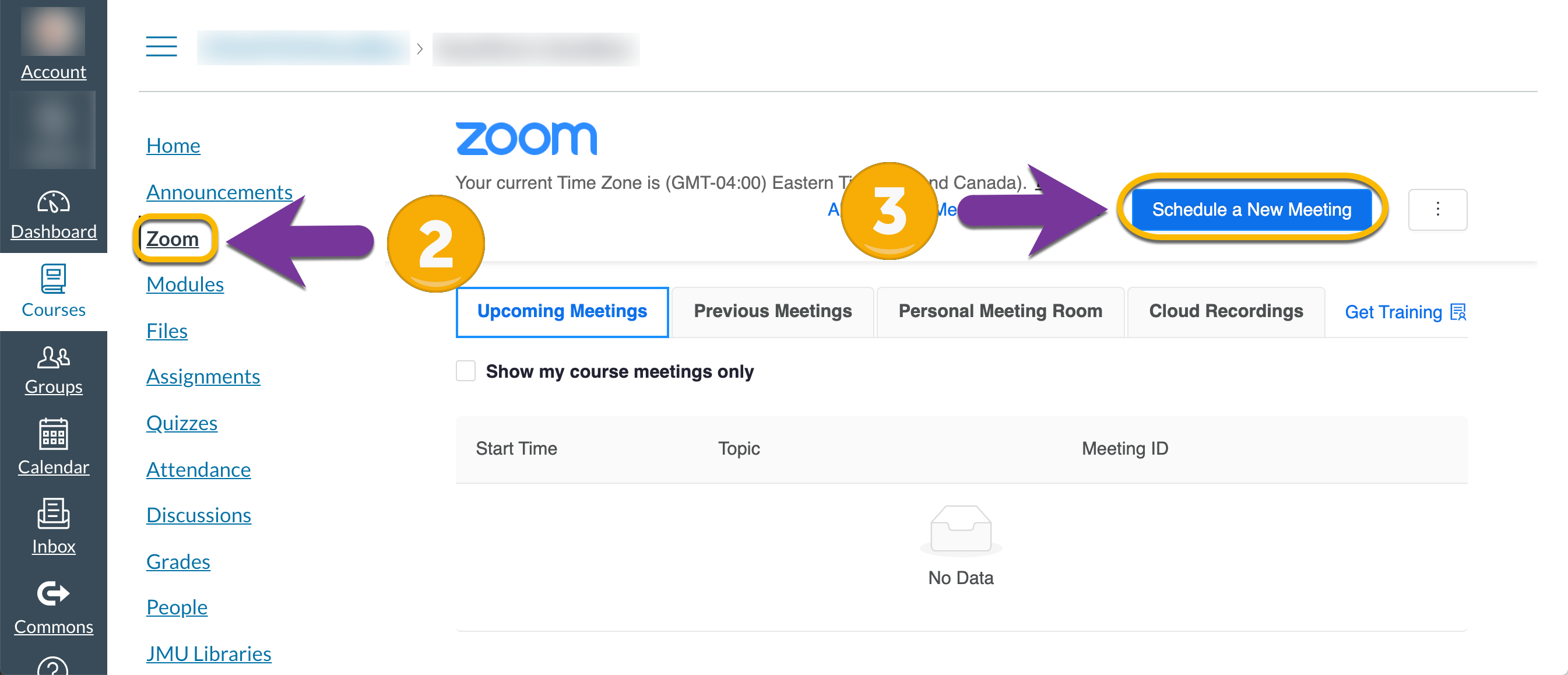 screenshot showing Zoom tab in Canvas and Schedule a New Meeting button