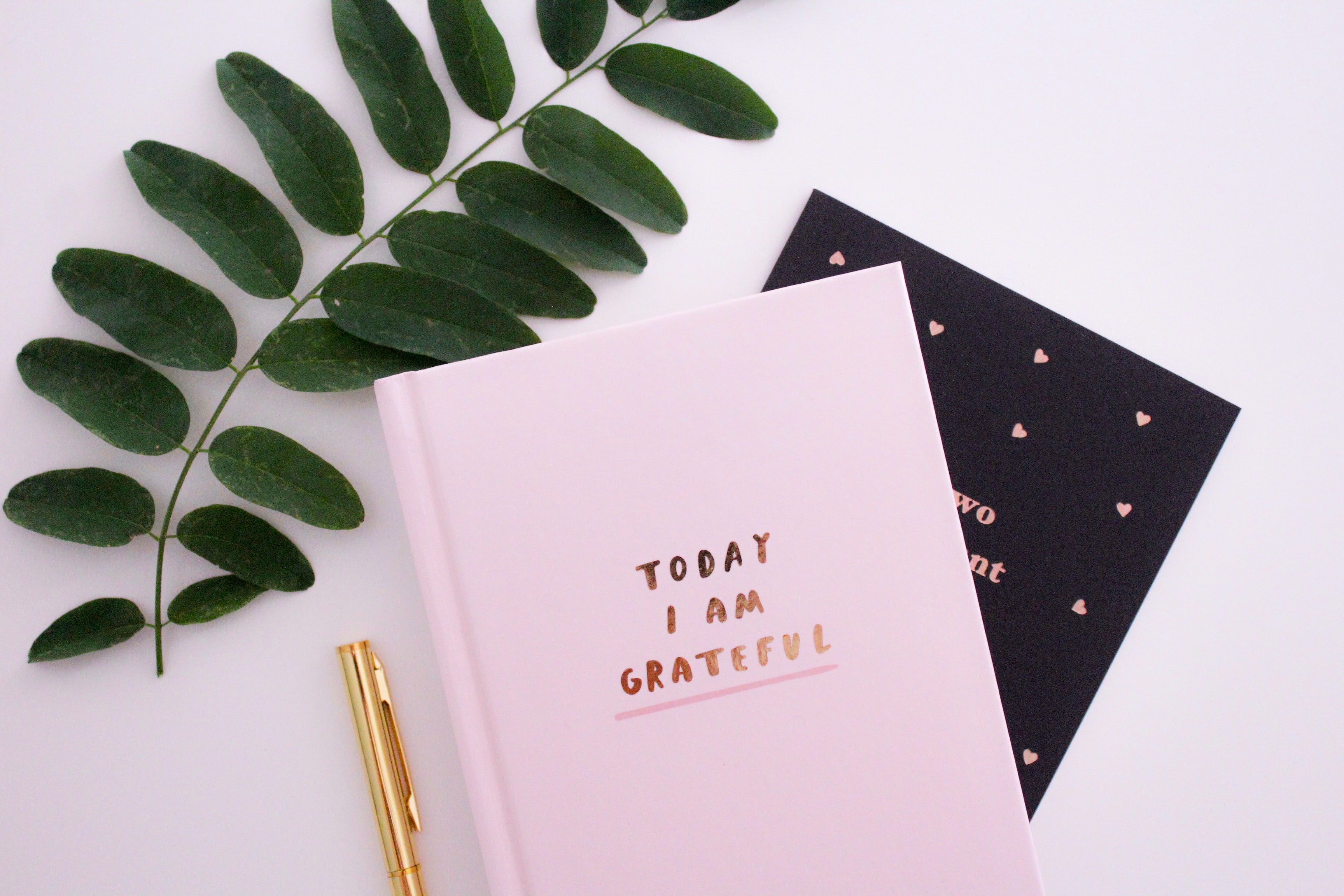 """Photo of a journal that says """"Today I am Grateful"""" on the cover"""