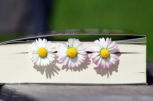 Book with 3 white flowers inside