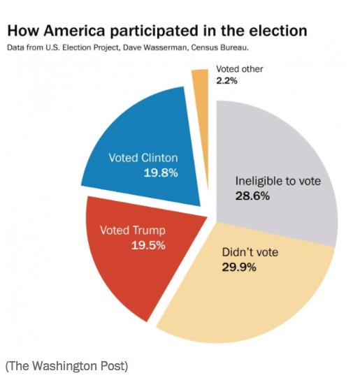 pie chart showing voter participation in the 2016 presidential election