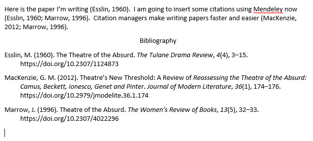 screenshot of Word document with formatted bibliography