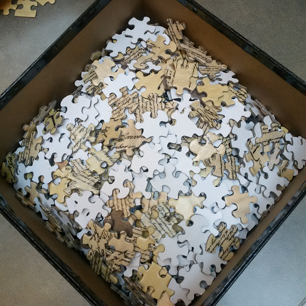 Constitution puzzle pieces