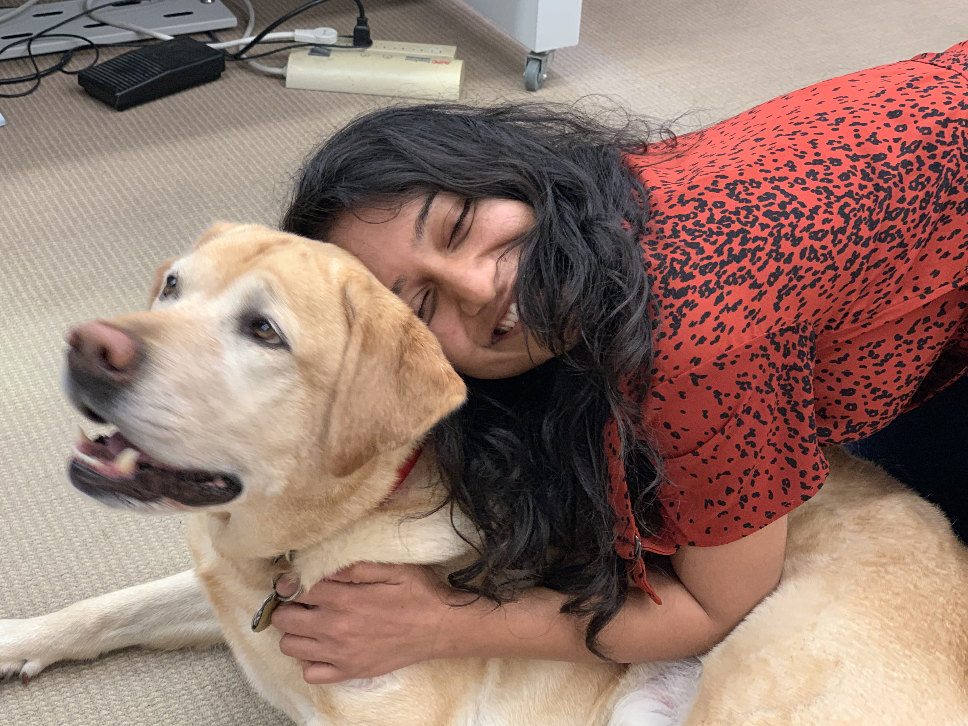 Countway Cuddles; Pet Therapy with Cooper