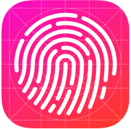 iPad Touch ID icon