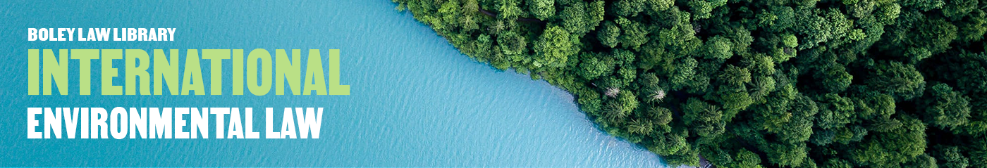 border of a lush island and the ocean with international environmental law written in the water