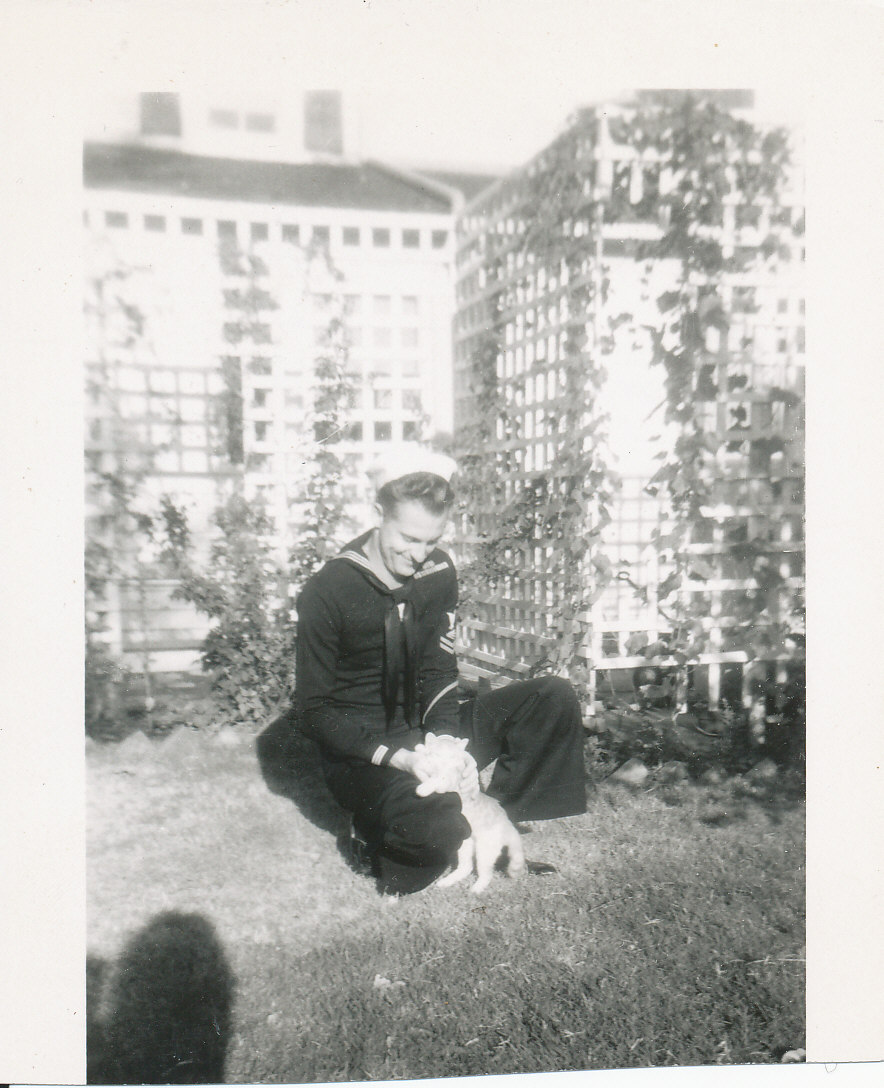 young man in sailor uniform playing with a kitten