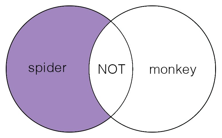 "Venn diagram with the left circle saying ""spider"", the right circle saying ""monkey"", their overlap says ""not"".  The left circle that says ""spider"" is purple, but the right circle and overlap are white."