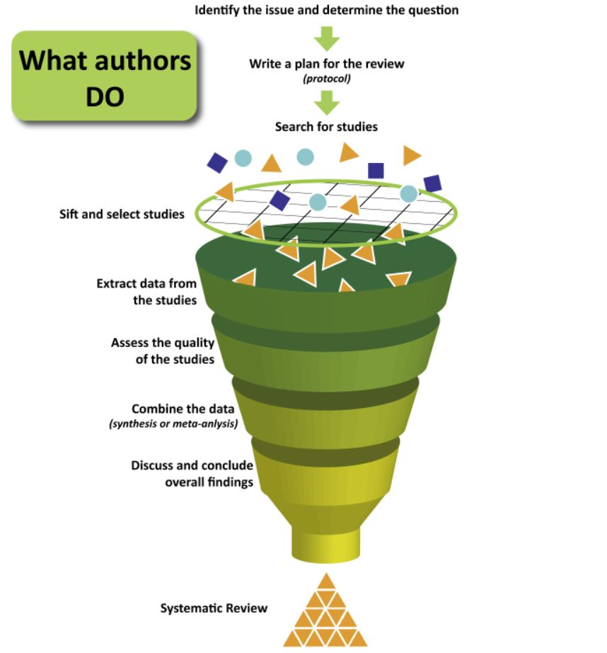 Systematic Review Visualized