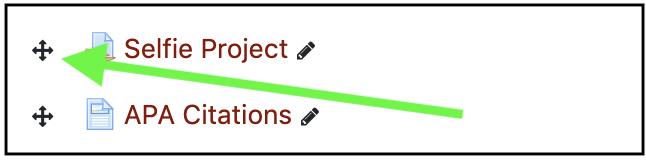 four arrow icon to left of item