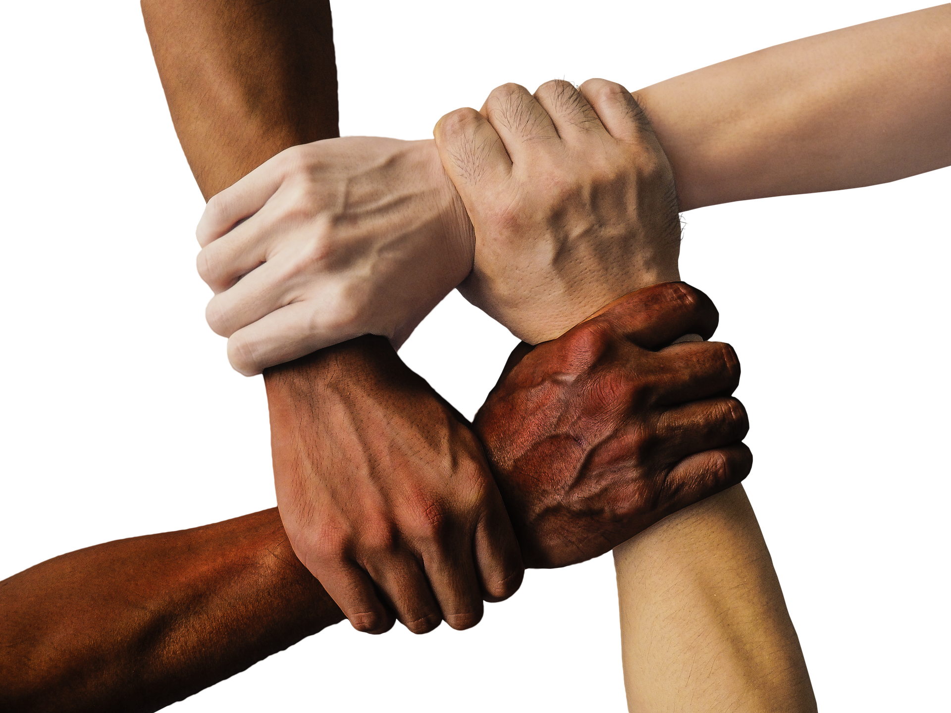 a photograph showing multiracial hands joined together in a circle