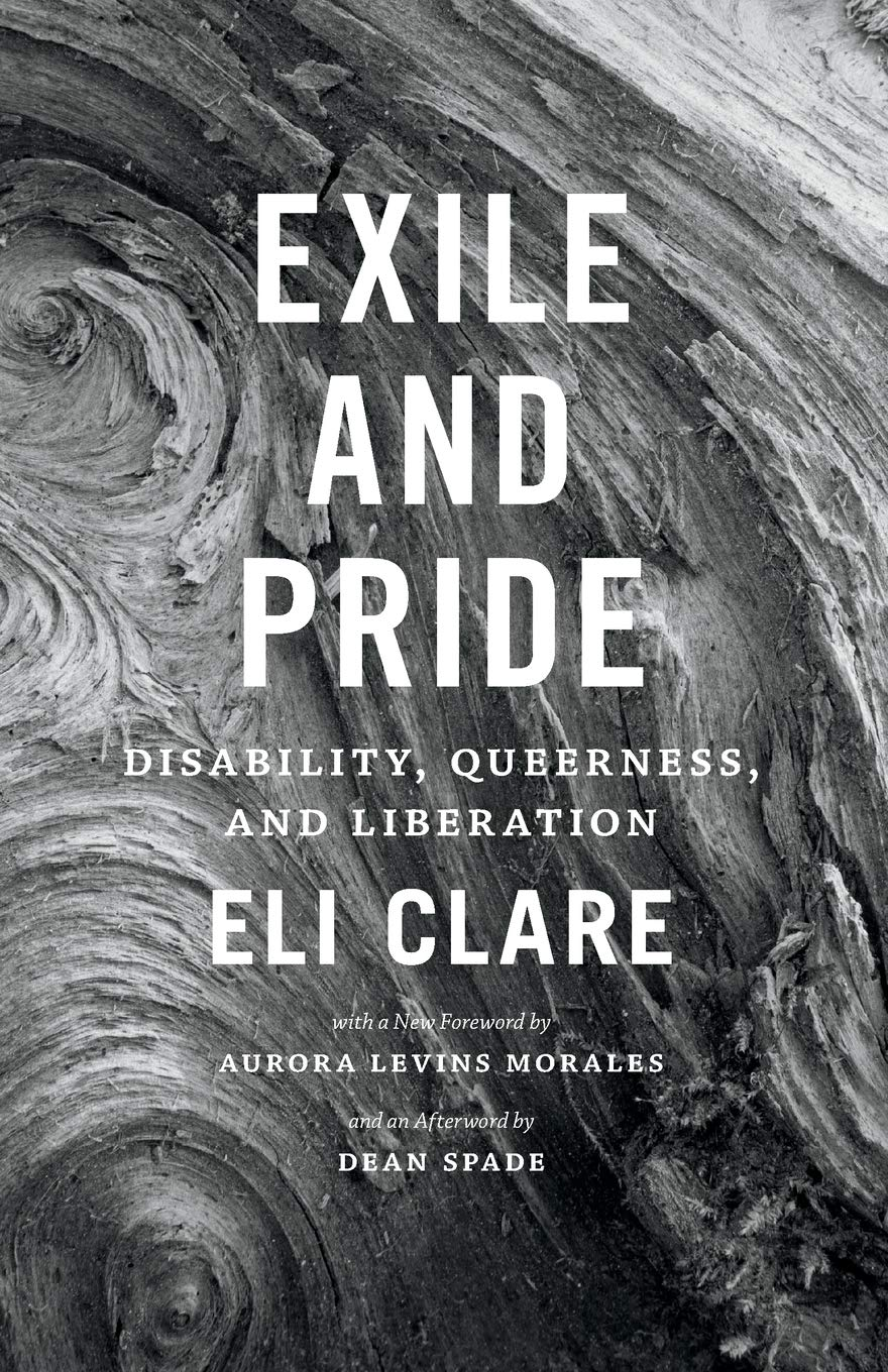 Book Cover for Exile and Pride