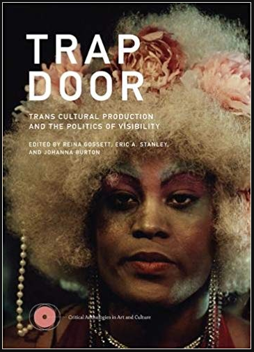 Book Cover for Trap Door