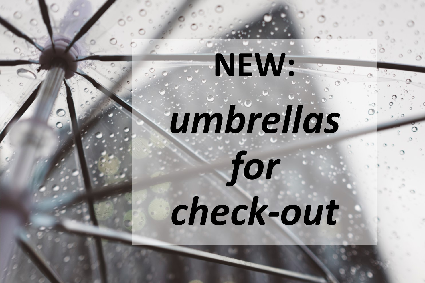 New: Umbrellas available for check-out