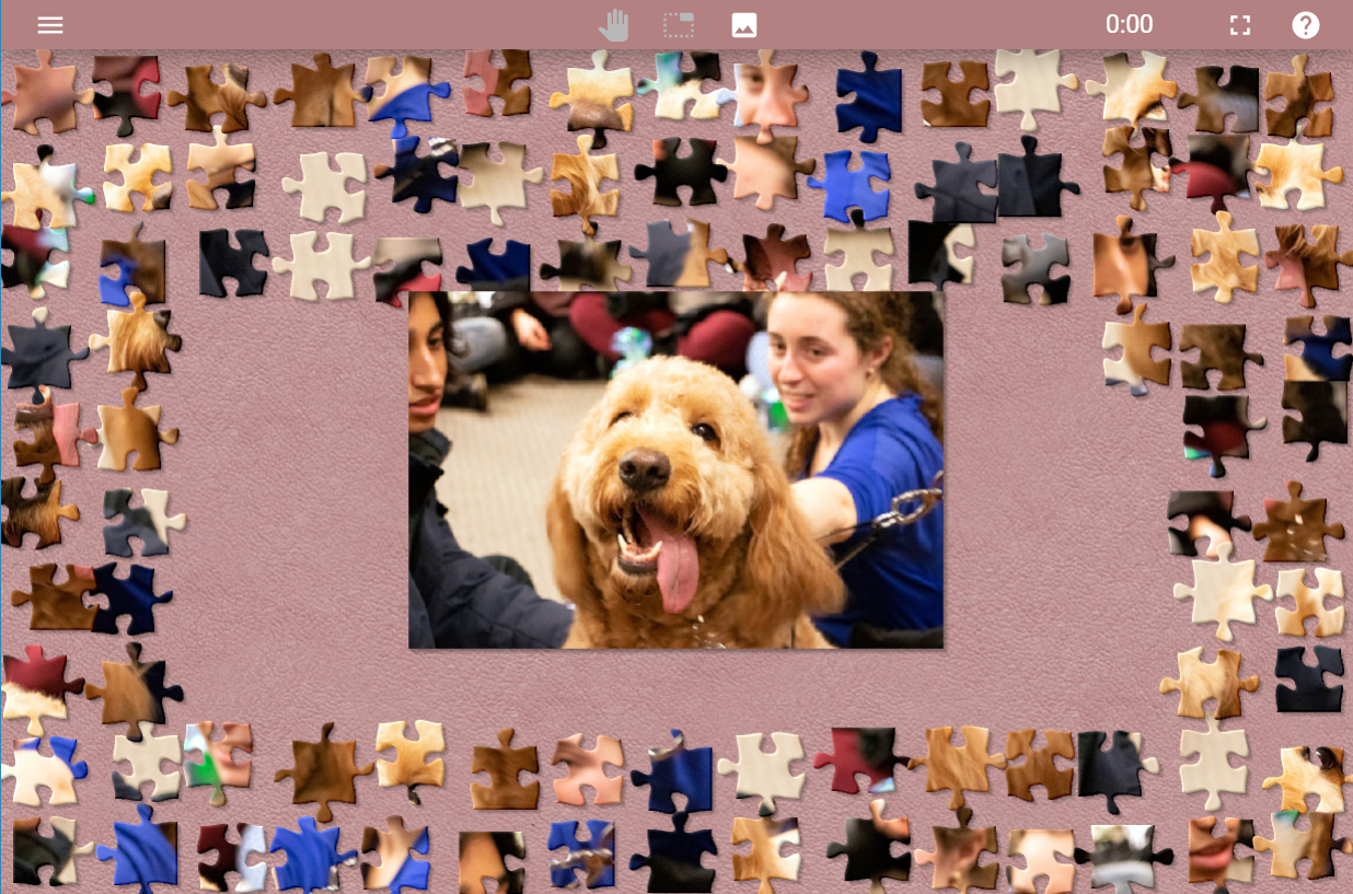 An undone puzzle of a dog.