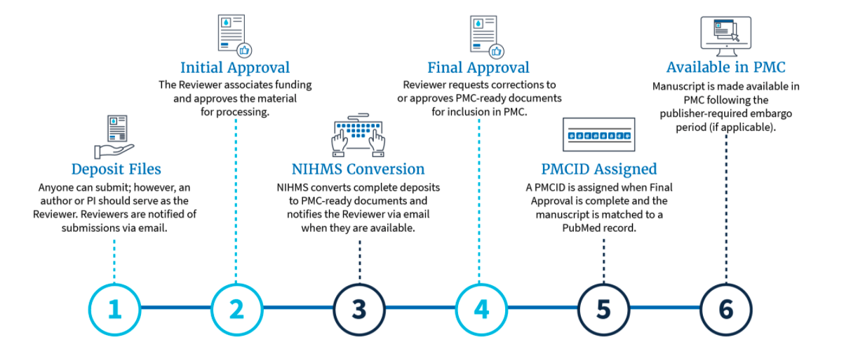 Flowchart showing the steps in the process from initial deposit of a manuscript into NIHMS to the document being available in PubMed Central
