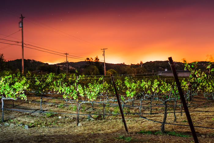 fire's glow behind hills and vineyard