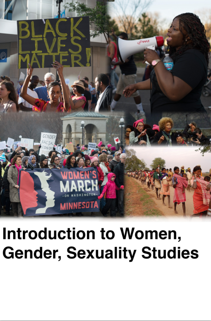 Introduction to Women, Gender, Sexuality Studies book cover
