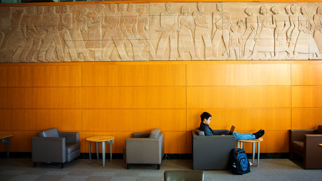 A student studies in Mann Library.