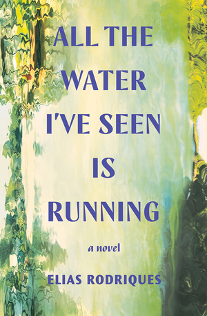 All the water I've seen is running : a novel