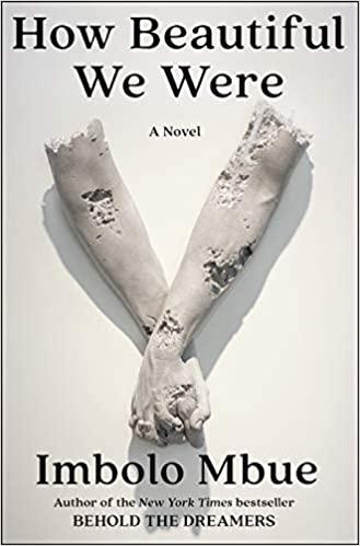 How beautiful we were : a novel
