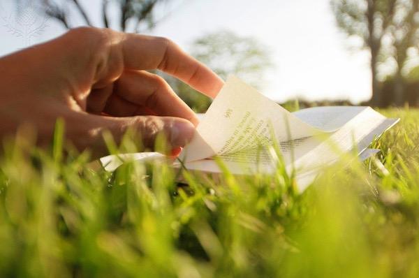 Reading in a park - Britannica ImageQuest