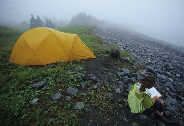 Reading on a foggy morning in Chance Cove Provincial Park in Newfoundland, Canada - Britannica ImageQuest