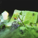 Dry ice engulfing potions - Britannica ImageQuest