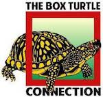 Box Turtle Connection