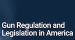 HeinOnline Gun Regulation and Legislation in America