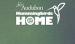 Hummingbirds at Home