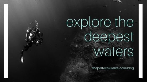 Explore the Deepest Waters