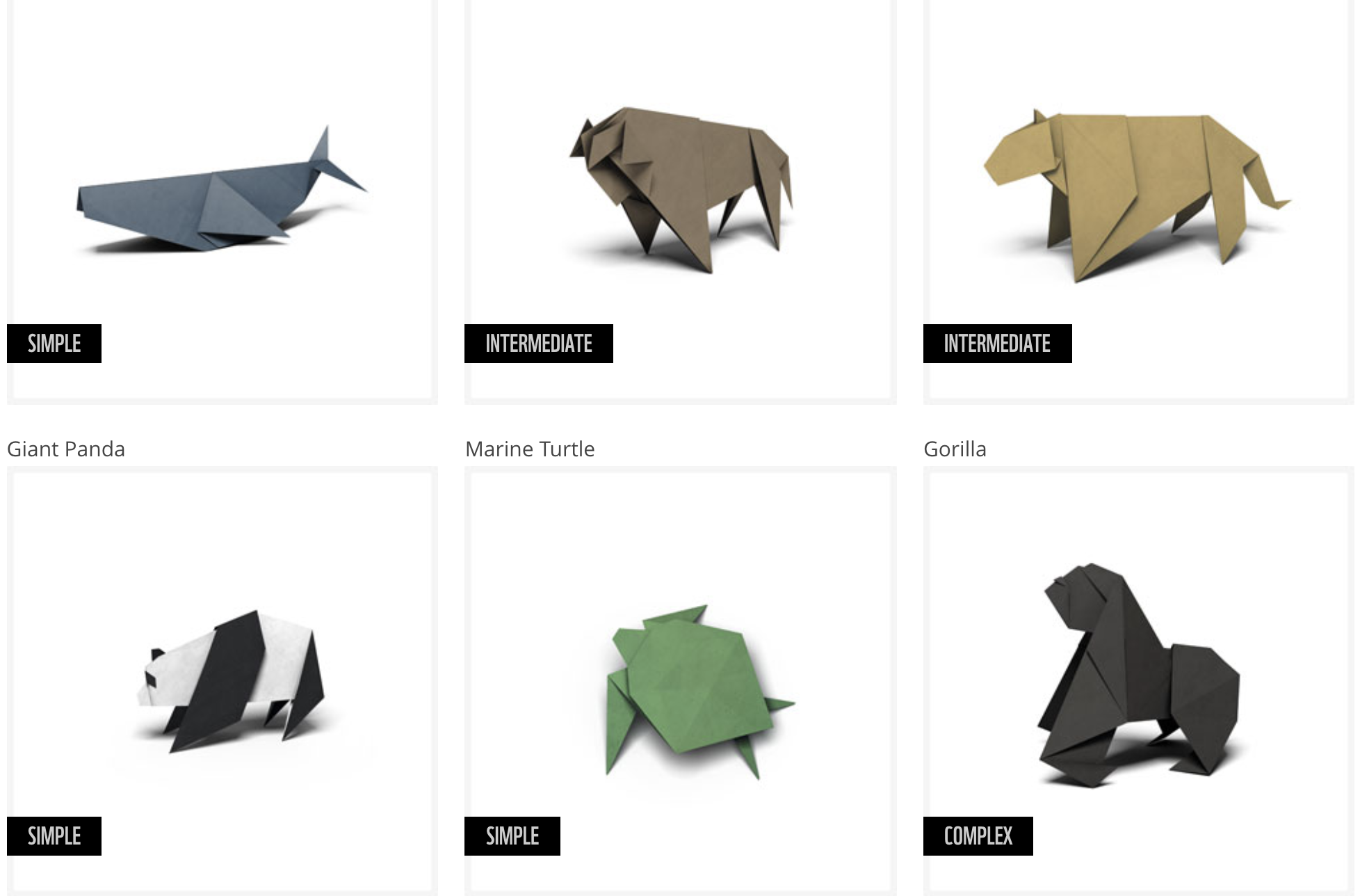 World Wildlife Foundation Animal Origami