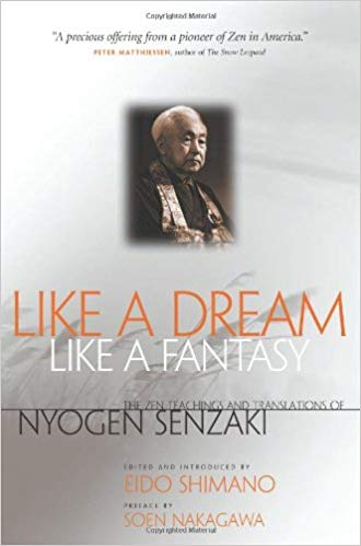 Senzaki Like A Dream cover art