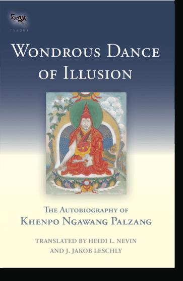 Palzang Wondrous Dance cover art