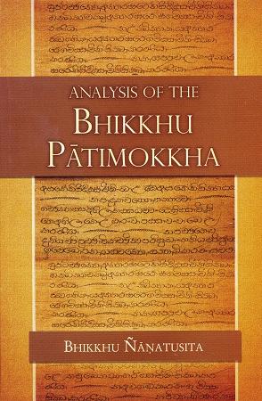 Nyanatusita Analysis cover art