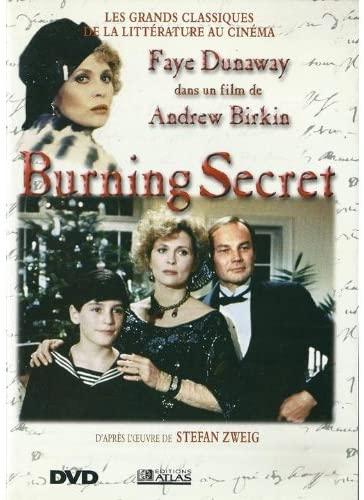 Burning Secret film cover art
