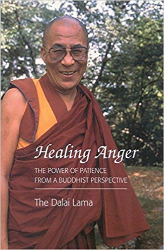 HHDL Healing Anger cover art