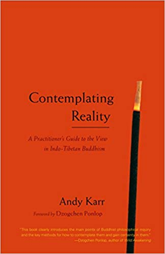 Karr Contemplating Reality cover art